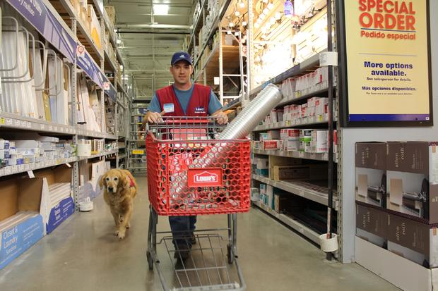 Lowes Air Force Veteran Service Dog StoptheBull
