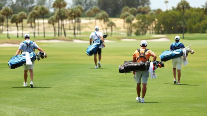 McIlroy-Johnson dispatch Wolff-Fowler in return of live golf to TV