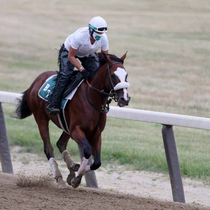 Belmont Stakes Entries 2020: Race-Day Predictions for All Horses and Jockeys