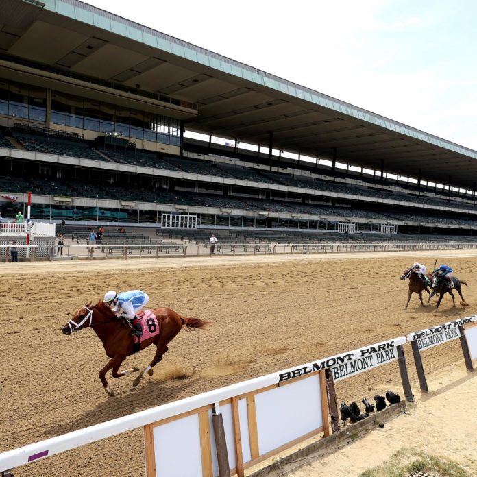 Belmont Stakes 2020: Triple Crown Results, Standings, Payouts, Replay Highlights