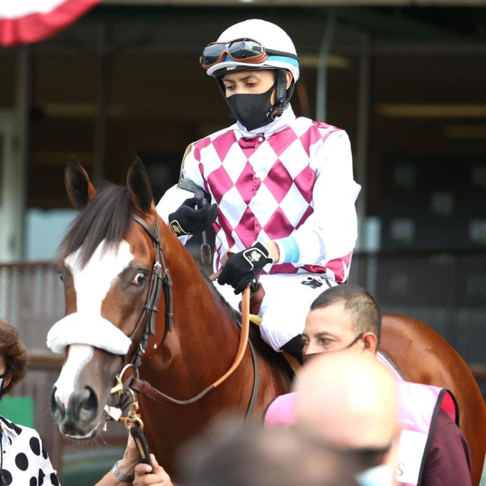 Tiz the Law Chases Down Leader on Backstretch to Win 2020 Belmont Stakes