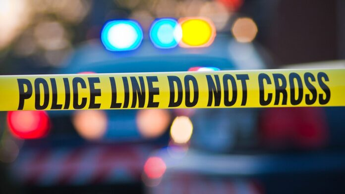 Election 2020  Donald Trump  President Trump  Conservative News  RNC New York City teen, 17, fatally shot in front of home